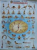 Yoga Asanas (soulisticwellness)