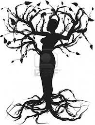 Tree of Life 123rf