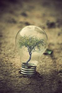 the-world-inside-a-light-bulb-2-adrian-limani