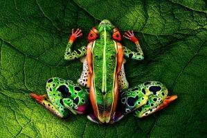 body-art-illusion-johannes-stoetter-13